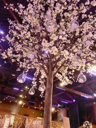 blossom trees blossom trees wedding lounge