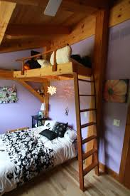 Timber Bunk Bed Bunk Bed Timber Frame The Beetle