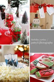 ryan u0027s six fayetteville nc birthday party photographer