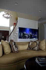 Aquarium For Home Decoration Long Island Aquarium Service
