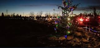 santa rosa christmas lights photos show burned out coffey park not immune to holiday spirit sfgate