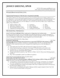 sample resumes for hr executives sidemcicek com