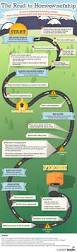 the road to home ownership infographic first time homeowners