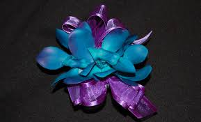 turquoise corsage vibrant purple and turquoise orchid wrist corsage destination or not