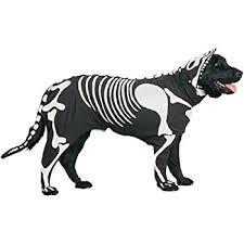 Scorpion Halloween Costume Amazon Zack U0026 Zoey Scorpion Dog Pet Costume Small Pet