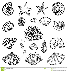 shell coloring page