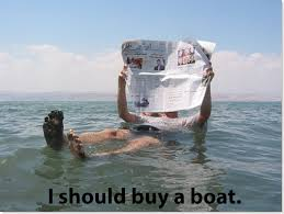 Cat Buy A Boat Meme - in a parallel universe wait what i should buy a boat cat know