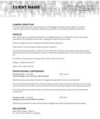 Loan Processor Resume Samples by Top Resume Services 1 On 1 Resumes Review