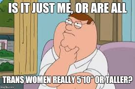 Peter Griffin Meme - peter griffin thinking imgflip