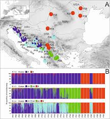 plos one genetic diversity and demographic history of wild and