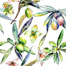 olive tree pattern in a watercolor style isolate stock vector art