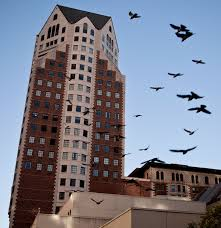 Halloween Haunt Los Angeles Haunted Locations In Los Angeles From The Hollywood Tower To The