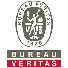 bureau veritas holdings inc search profiles