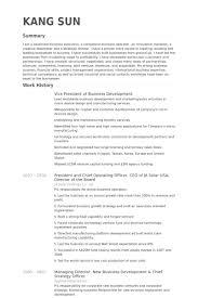 Ad Operations Resume Vice President Of Business Development Resume Samples Visualcv