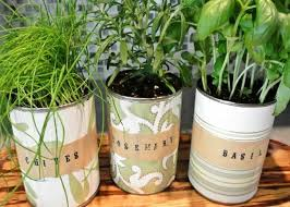fantastic tabletop herb garden images garden and landscape ideas