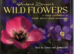 South African Wild Flowers - gerhard jpg