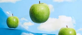 la chambre d oute magritte magritte the apple the s pellegrino