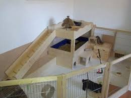 Large Rabbit Hutch Inside Rabbits The Big Rabbit Hutch