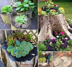 best 25 tree stumps ideas on tree stump furniture