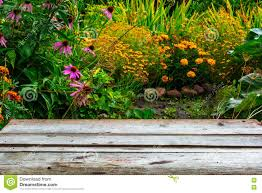 blurred background of autumn garden and wooden desk table stock