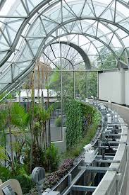 Botanical Garden Sydney by A Living Masterpiece At The Royal Botanic Garden Sydney