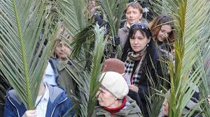 palm fronds for palm sunday waving fronds around the world christians palm sunday