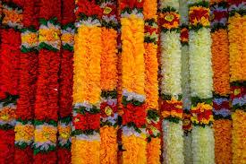 hindu garland up of beautiful flower garland in malaysia stock image