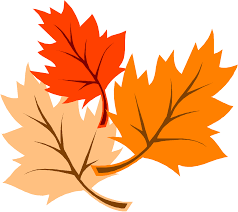 thanksgiving leaves clipart transparent background