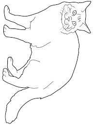 extremely inspiration himalayan animal coloring pages cats