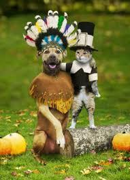 happy thanksgiving nashville nashville real estate