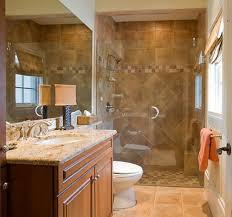 Nice Small Bathrooms Bathroom Vanity Under Mirror Beside Walk In Shower Nice Diy