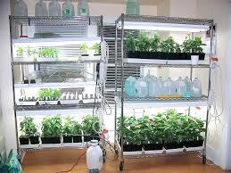 indoor garden lights home depot indoor gardening lights 5 best led grow lights for indoor gardening