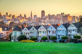 best lawn grass for the san francisco oakland san jose ca area