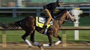 how far can a horse travel in a day images How fast do kentucky derby horses run metro us jpg
