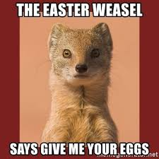 Weasel Meme - the easter weasel says give me your eggs administrative weasel