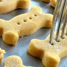 recipes for dog treats cleo s pumpkin dog biscuits recipe by daiseyduck key ingredient