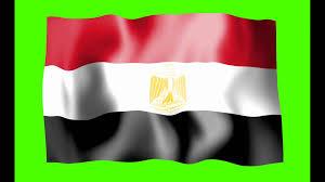 Eygpt Flag Egypt Waving Flag Green Screen Animation Free Royalty Footage