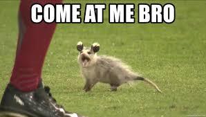 Come At Me Bro Meme Generator - rally possum meme generator