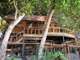 koh miang island 4 similan islands
