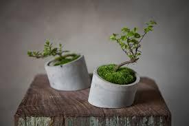 concrete design concrete planters by shenme design