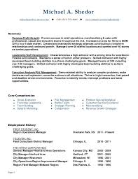 What To Put In A Resume Summary What To Put In A Resume Summary Resume Ideas