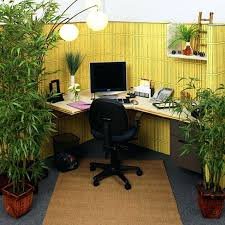 office design best indoor office desk plants