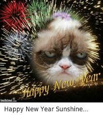 Happy New Year Cat Meme - imikimi com happy new year sunshine new year s meme on me me