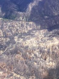 Wildfire Pod Tab by Boise State Public Radio 7 17 17 1 Year After Pioneer Fire Ecoflight