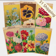 cheap seed packets antique seed packet labels with botanical illustrations make great
