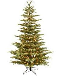 bargains on puleo international puelo international 7 5 u0027 aspen fir