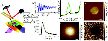 mid infrared spectroscopy beyond the diffraction limit via direct