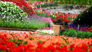 master sustainable gardening tips for sustainable landscaping