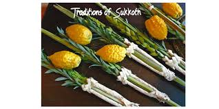 sukkot supplies sukkot or tabernacles traditions heart of wisdom homeschool