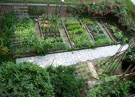 Small Vegetable Garden Ideas Pictures Vegetable Garden Ideas Top View Small Vegetable Garden Ideas You
